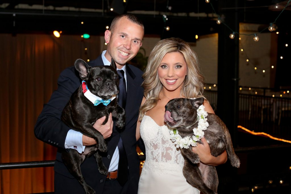 bride_and_groom_dogs